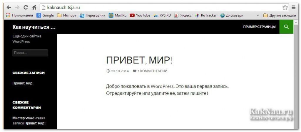 WordPress14
